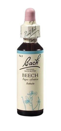 Bach® Beech 20ml