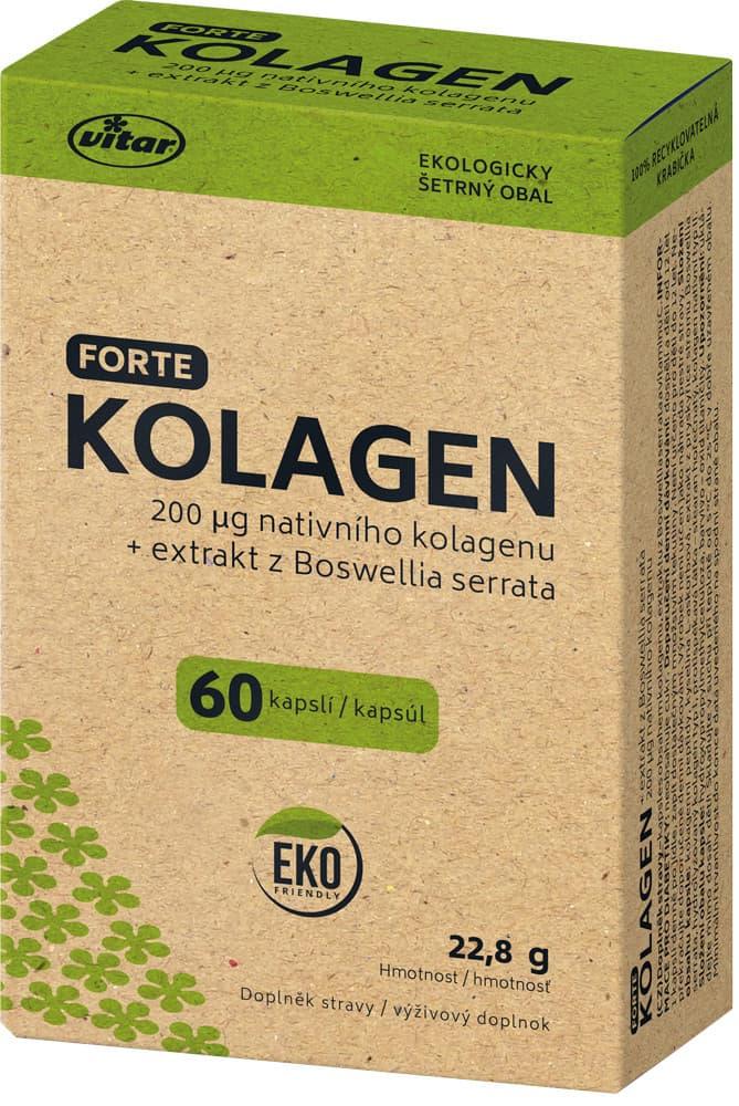 VITAR Kolagen Forte EKO 60 kapslí