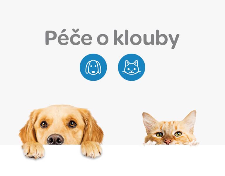 Alavis, péče o klouby, psi, kočky