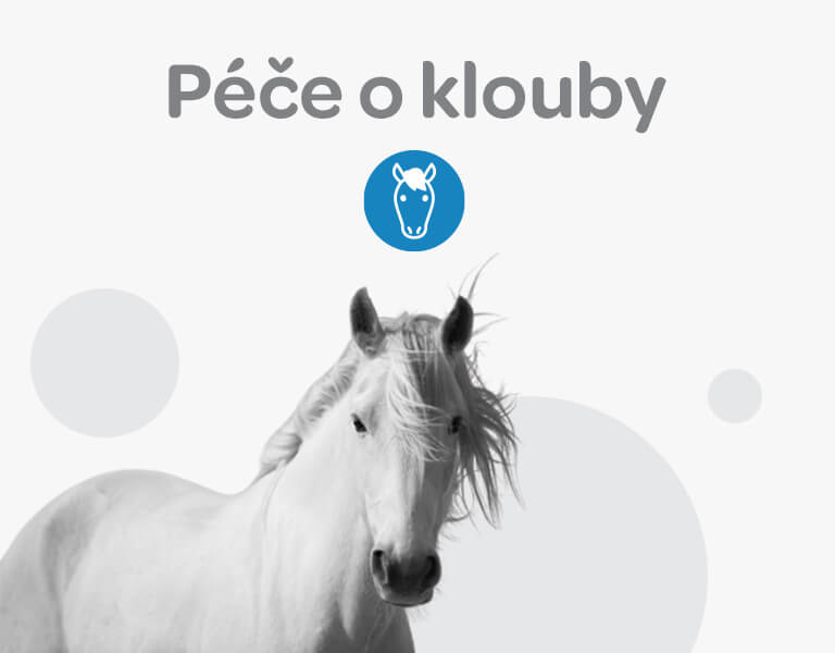 Alavis, péče o klouby, koně